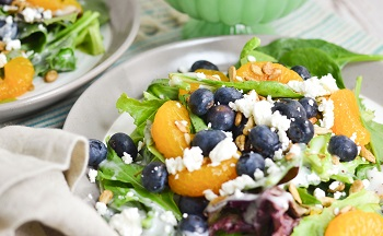 Picture of blueberry sun salad
